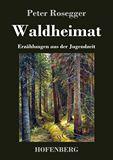 Waldheimat. Erzählungen aus der Jugendzeit